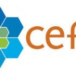Prácticas en el CEFIC – Sector Comunicación
