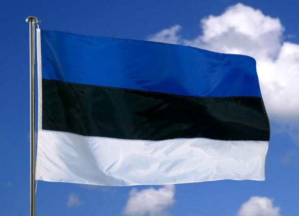 Estonia 610x440 - ¿Quieres hacer un SVE en Estonia?