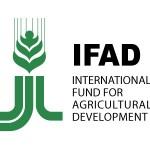 Prácticas remuneradas en el IFAD