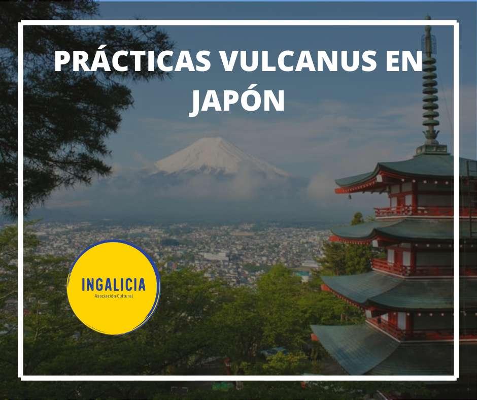 Beca Vulcanus Japón