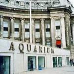 Varias ofertas para trabajar en el Acuario de Londres