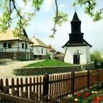 Vacante para SVE en Hungría