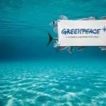 Varios puestos en Greenpeace-Roma
