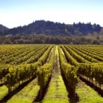 Enlaces utiles para encontrar trabajo en el sector agroalimentario