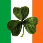 4 puestos en Irlanda del Norte, CON ESPAÑOL E INGLÉS