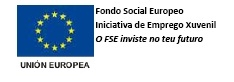 logo YEI FSE - Bolsas Galeuropa!! 2 meses de prácticas en empresas do estranxeiro